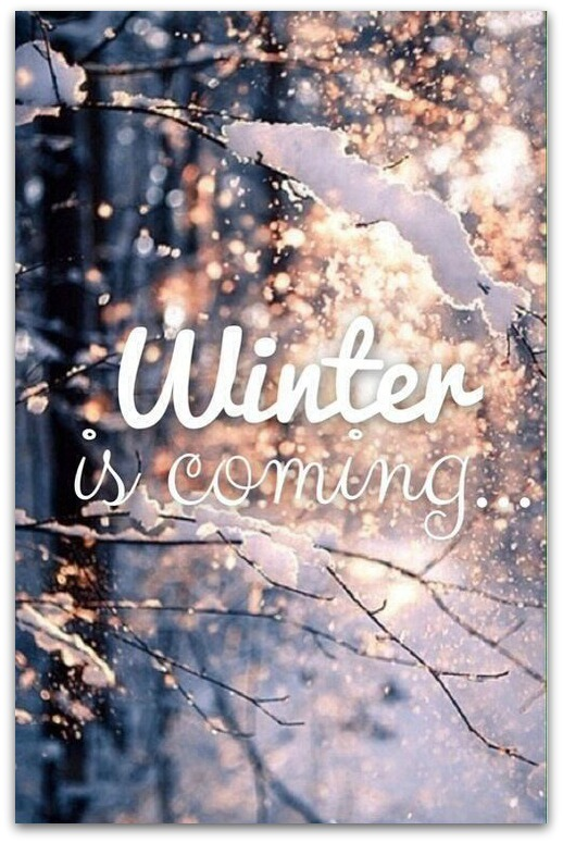Winter-is-coming-awesome
