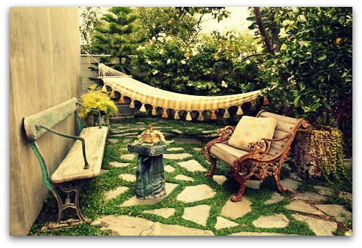 small-backyard-garden